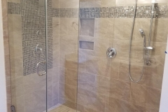 Glass Wall & Shower Door